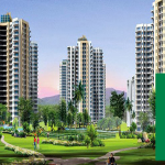sikka kaamya greens image